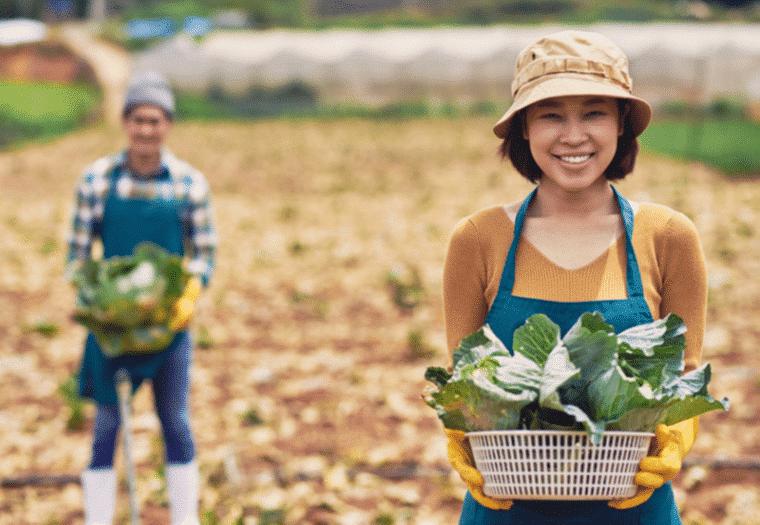 farmers thailand