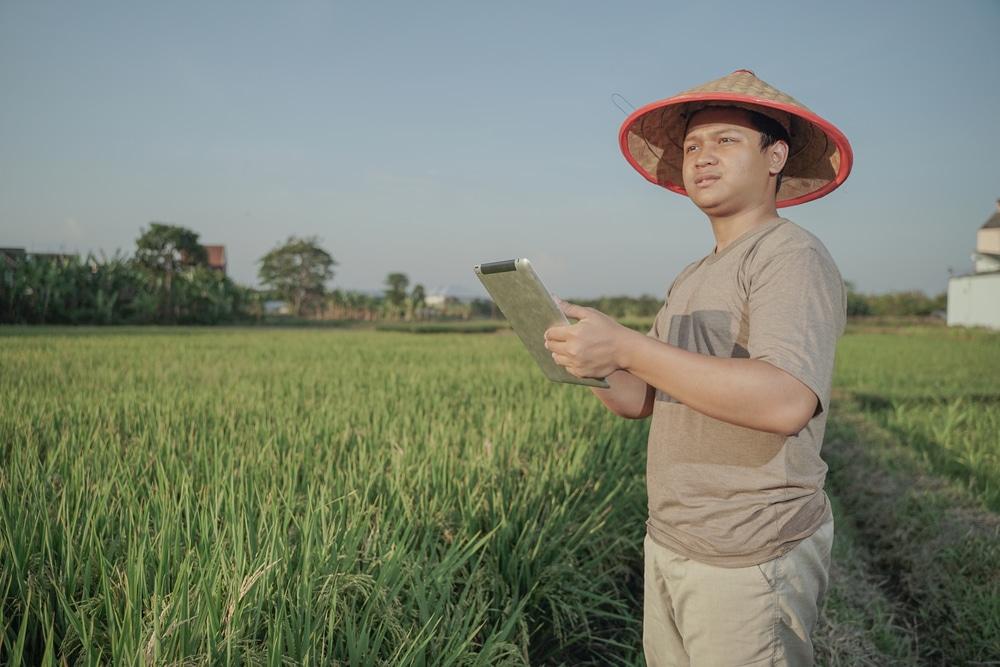 thai digital farmer